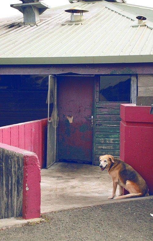 Photographie, Nouvelle-Calédonie, Kévin HOHLER